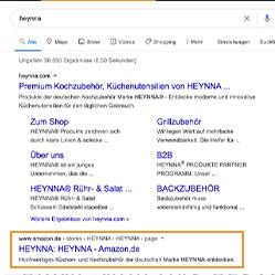 Amazon Brandstore Nutzung - Google